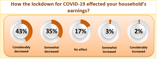 Survey Results: How the lockdown for COVID-19 effected your household's earnings?