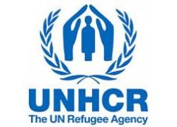 50-UNHCR.jpg