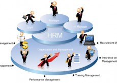 123-Baseline and End-line Surveys on IncomeMarket Return of Women Artisans and Home based Workers.jpg