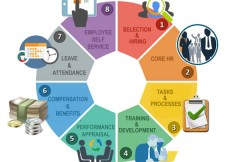 132-Development Impact Assessment Financial Inclusion Programme FIP.jpg