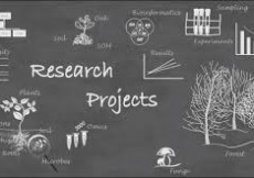 59-Institutional Assessment Survey of Community Organizations COs fostered by the Rural Support Programs RSPs in Pakistan.jpg