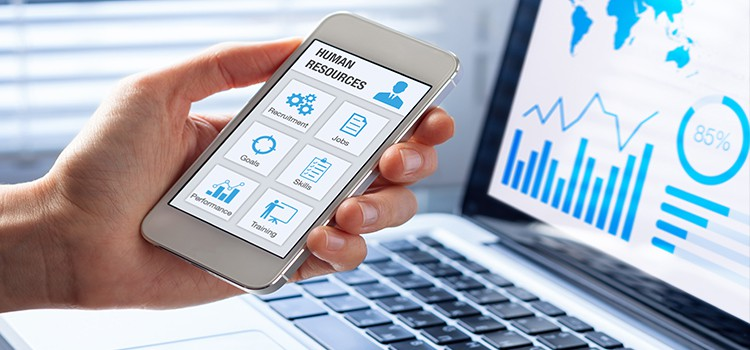 3-Human-Resource-Management.jpg