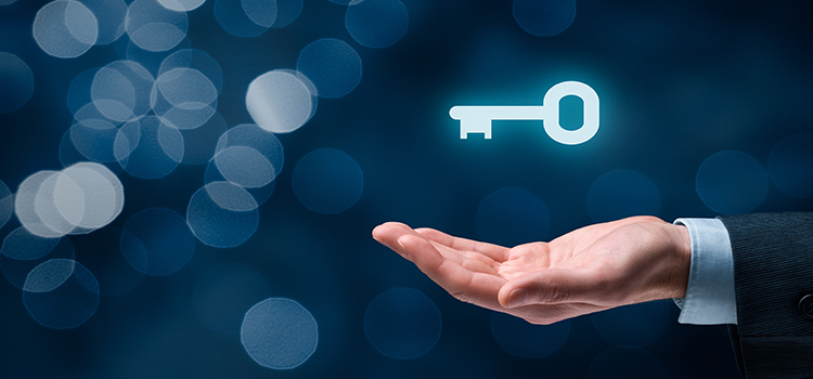 APEX Consulting Basic Facts